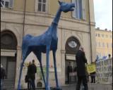 Roma, Cavallo di Basaglia arriva in Parlamento